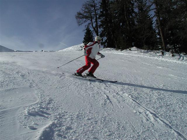 Prociocepción en esquí