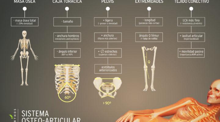 Esqueleto de la mujer: cosas que no sabías