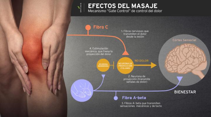 efectos-del-masaje