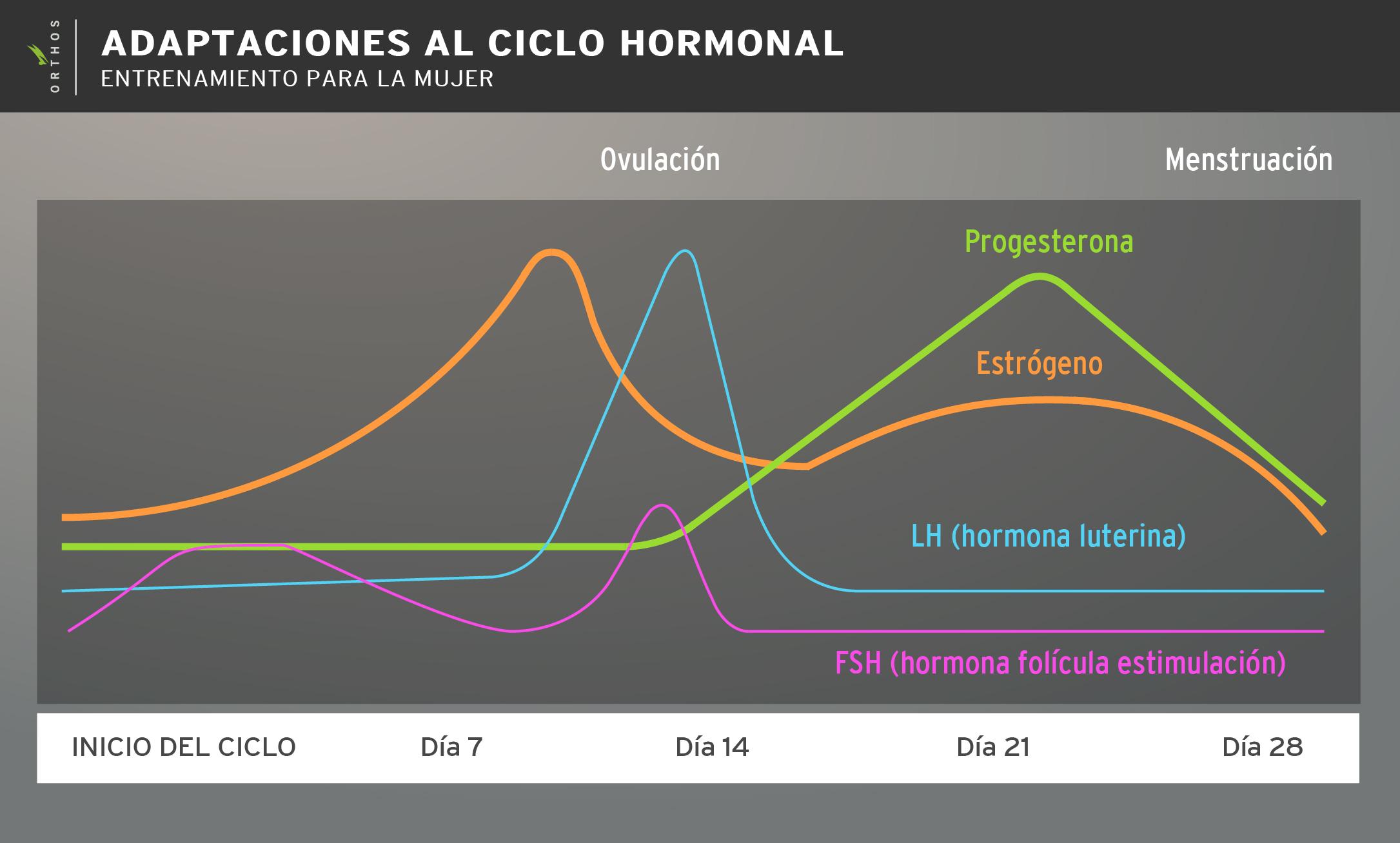 adaptaciones-al-ciclo-menstrual