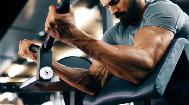 muscular-entrenamiento